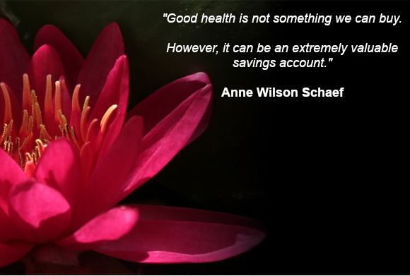 """Good health is not something we can buy. However, it can be an extremely valuable savings account."" Anne Wilson Schaef"